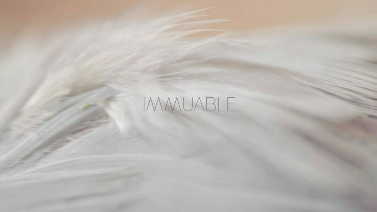 Immuable