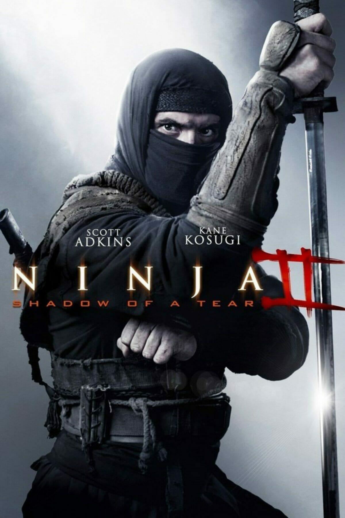 Ninja-II-Shadow-of-a-Tear-affiche