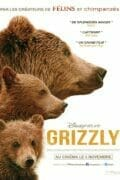 Grizzly-poster-France