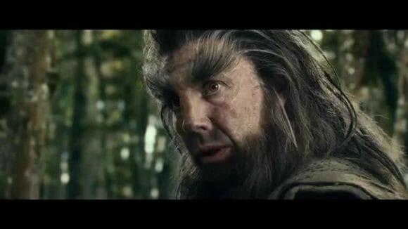Beorn-Le-hobbit