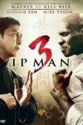 Ip-Man-3-poster - Copie