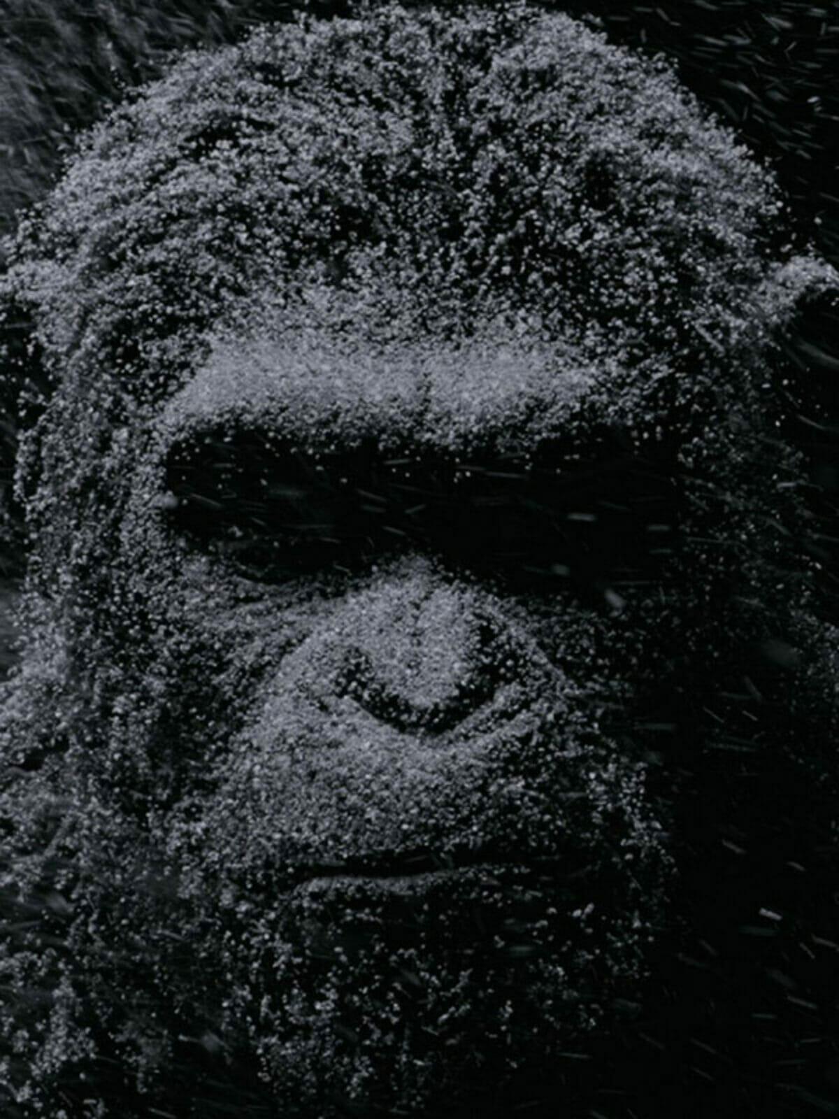 la-planete-des-singes-suprematie-poster-cesar