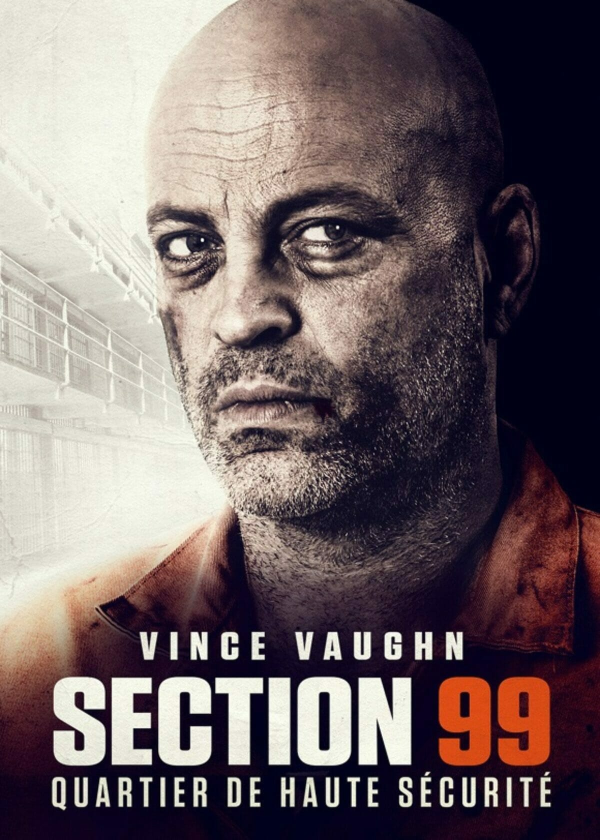Section-99-poster