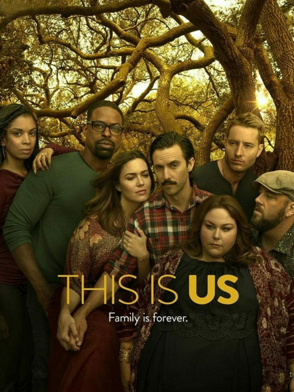This-is-Us-saison3-poster