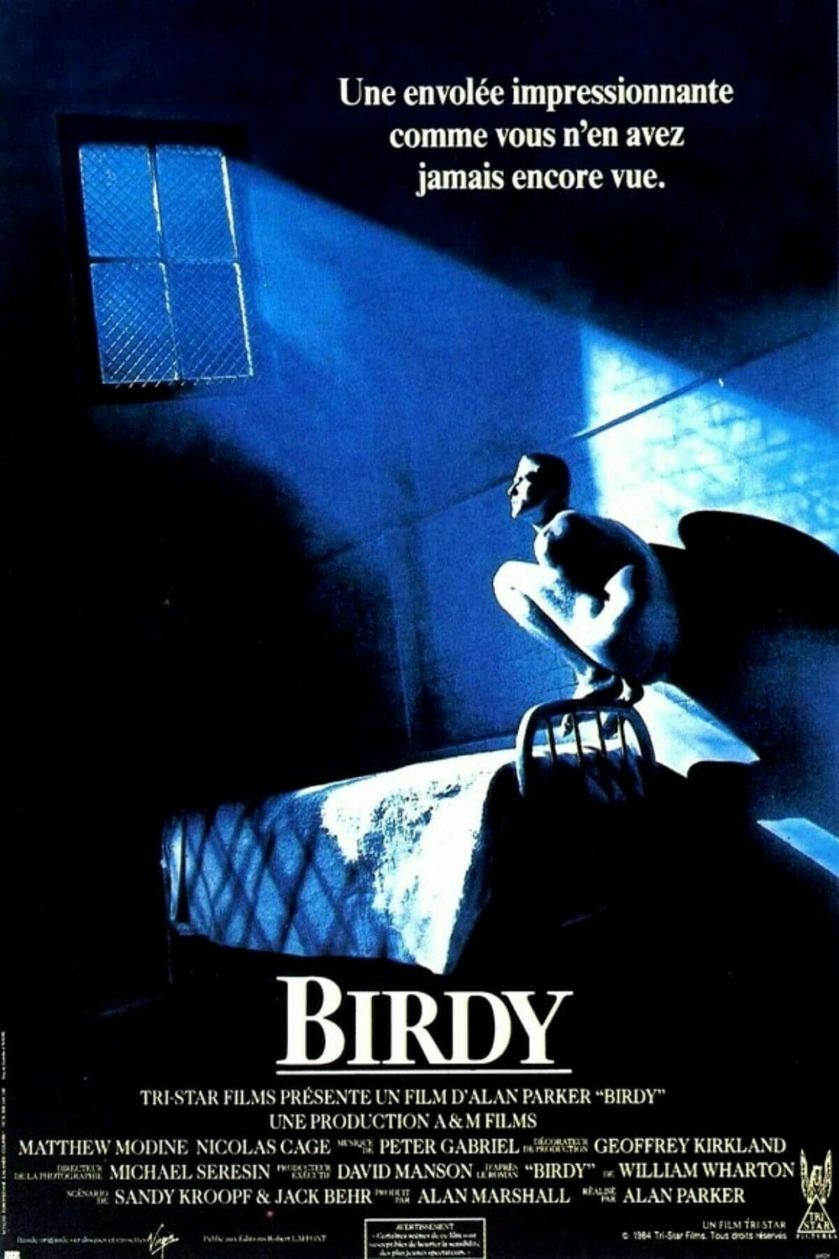 Birdy-poster